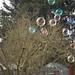bubbles-winter-fun-2