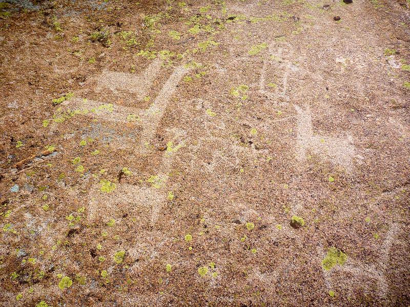 Petroglifos cerca de Ovejeria