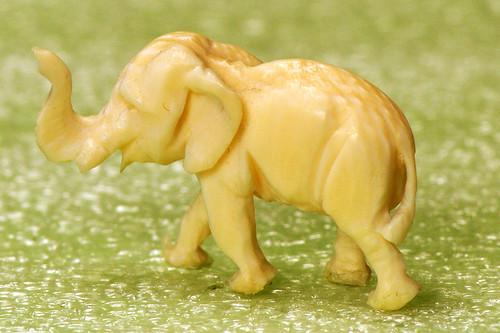 Makro Makrofotografie Fotografie Indoor-Fotographie Schlechtwetter-Indoorfotografie Januar 2016 Brigitte Stolle Mannheim Elefant Elefanten Bein Elfenbein Elfenbeinelefant Mini-Elefant