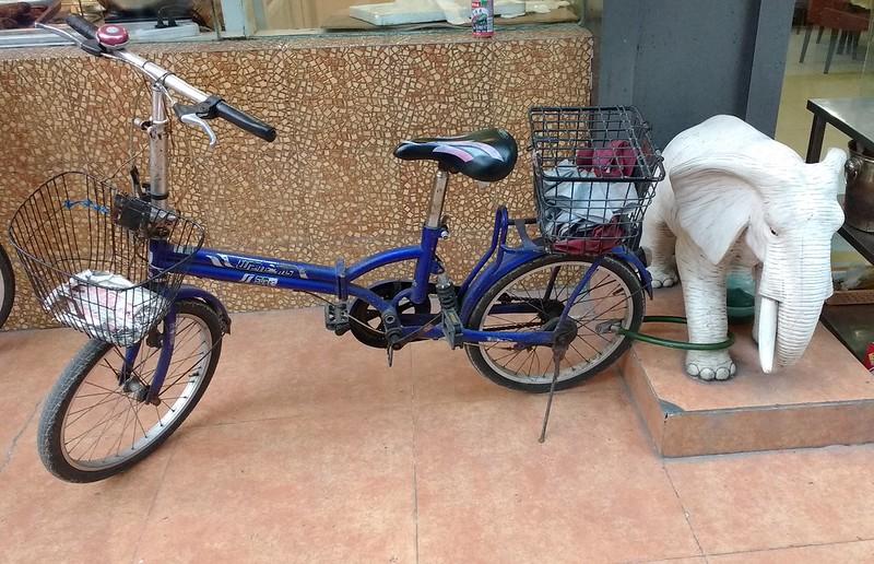 elephant bike tether