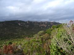 Sur le sentier de remontée à Suartone : la crête de Ghjuncaghjola avec Punta di Rafaellu