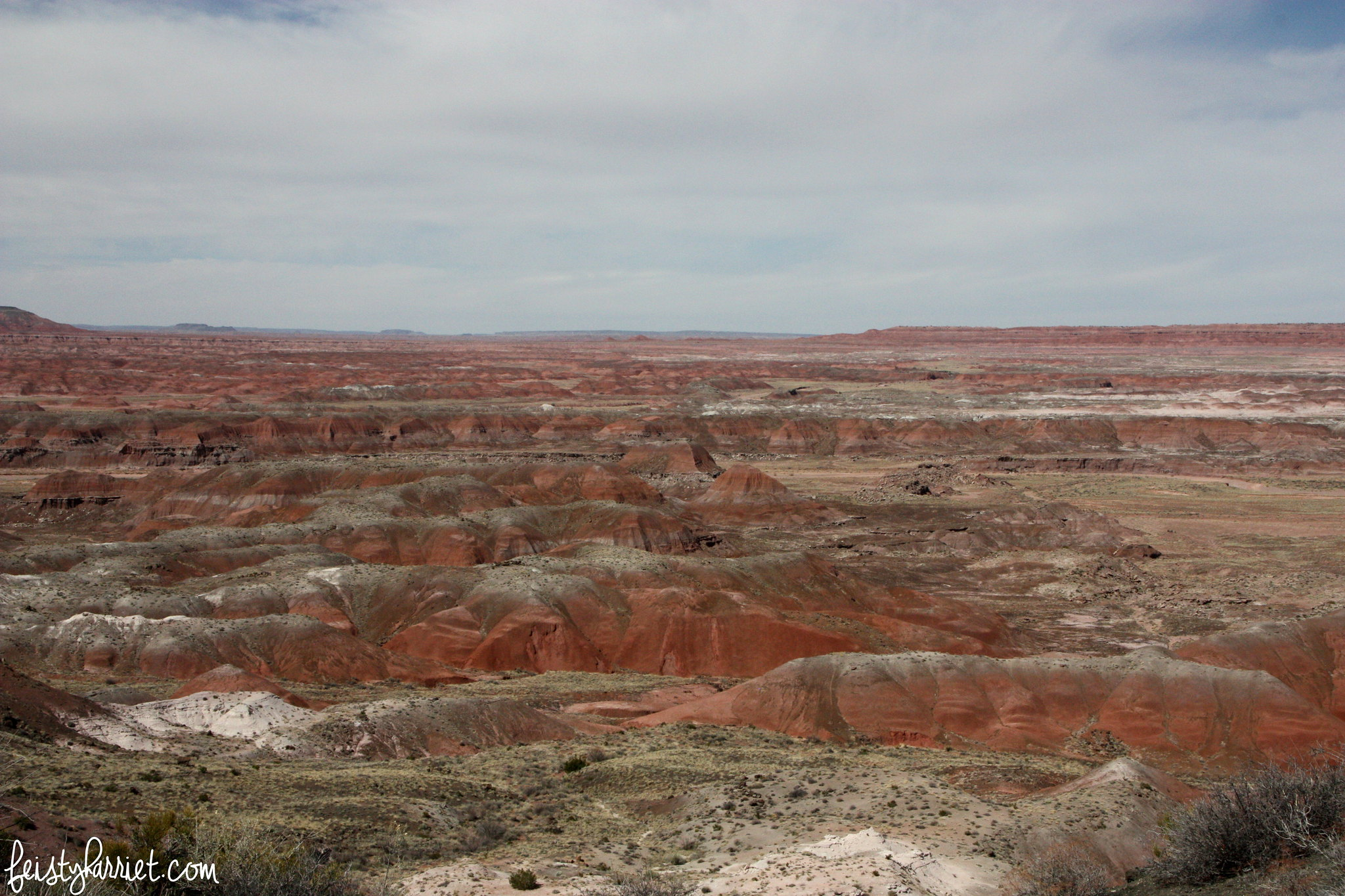 Petrified Forest NP 2_feistyharriet_March 2016