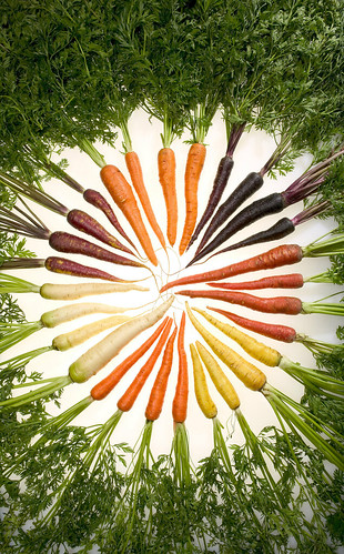 Multi-colored carrots arranged in a circle
