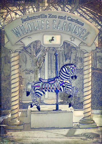 Image of a Carousel Horse at the Jacksonville Zoo