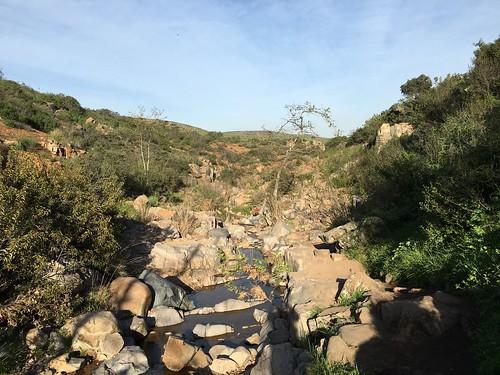 Mission Park stream