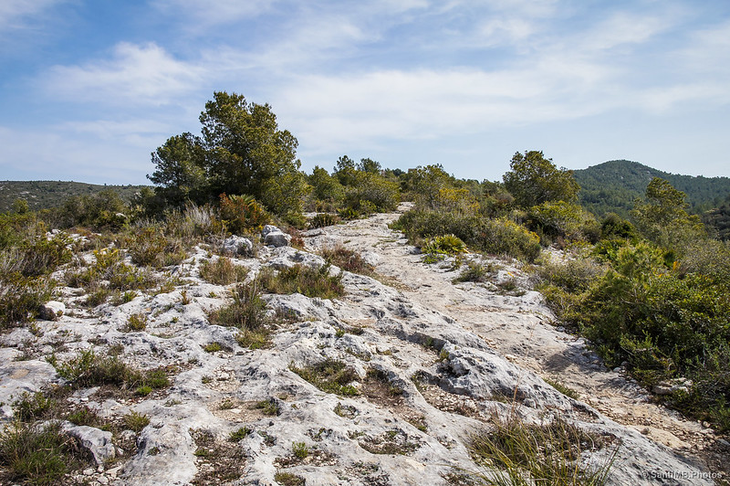 Camino rocoso