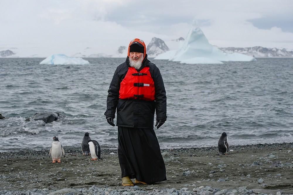 Патриарх в обнимку с пингвинами