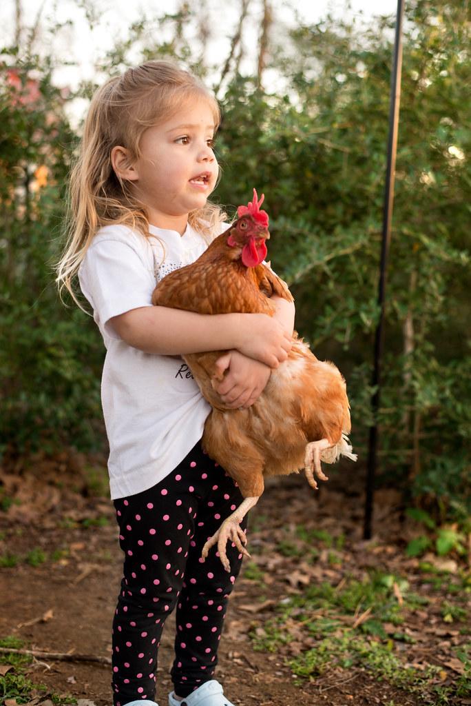 Reese Loves Her Animal...