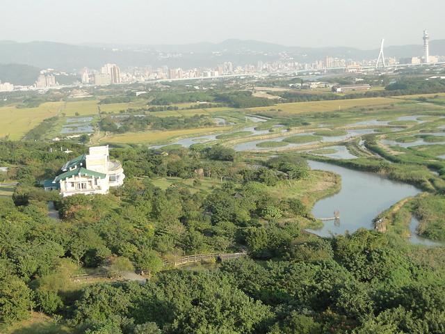 俯瞰關渡自然公園。圖片提供:陳仕泓