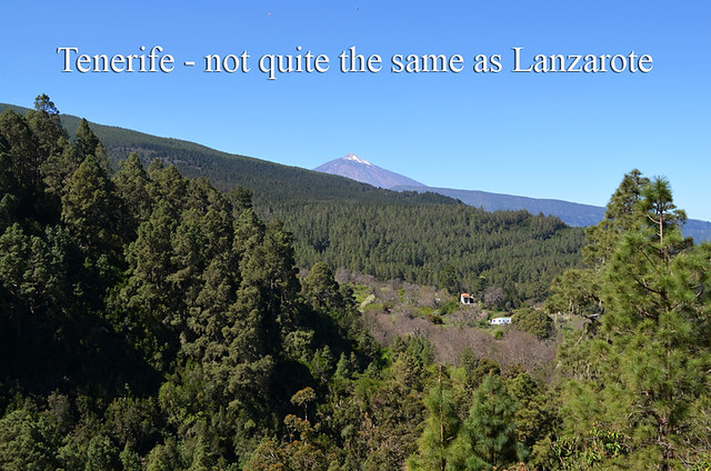 Tenerife not Lanzarote