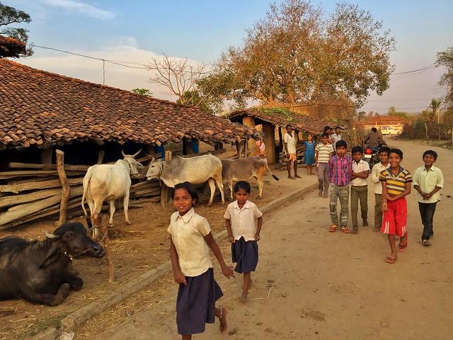 Aldea cercana a Kanha (India)