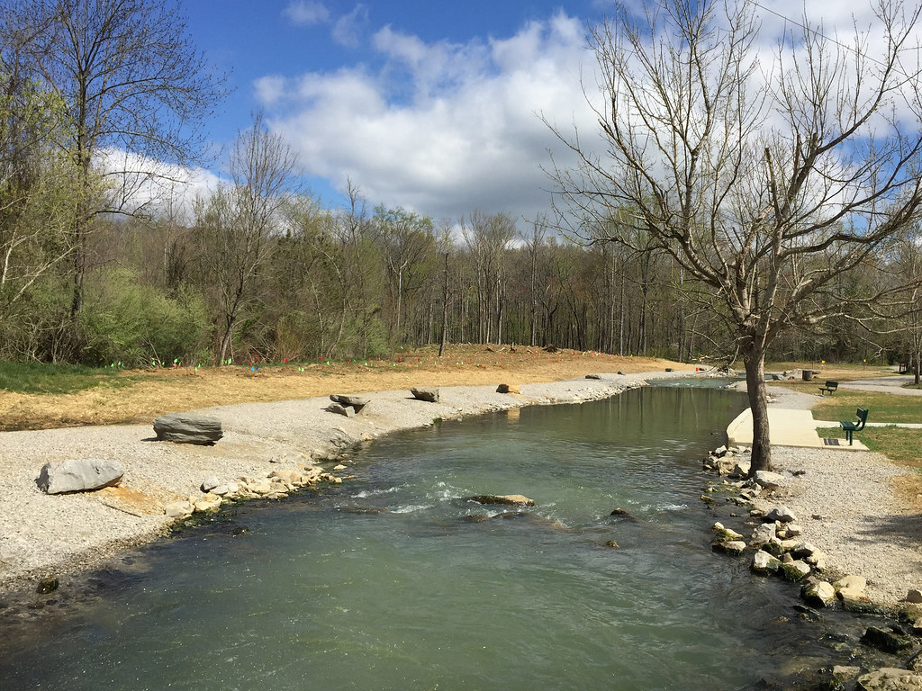 Tree planting at new fish hatchery some louisville for Fish hatchery ky