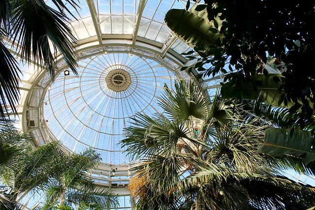 The Conservatory at New York Botanical Garden