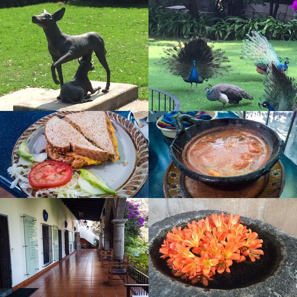 Mexico City - Dolores Olmedo