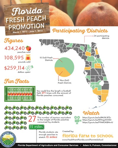 An overview of Florida's Fresh Peach Promotion from March 1 through June 1, 2015