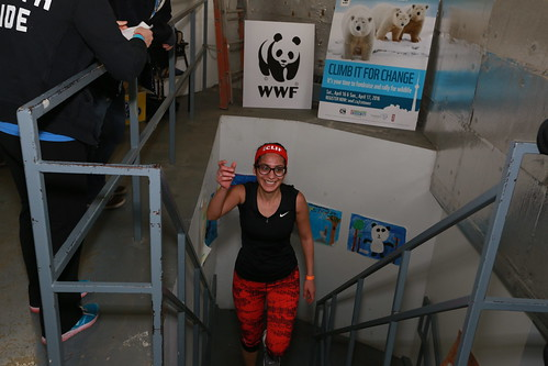 WWF's CN Tower Climb for Nature | 2016