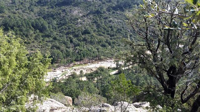 Le plateau au-dessus du Cavu
