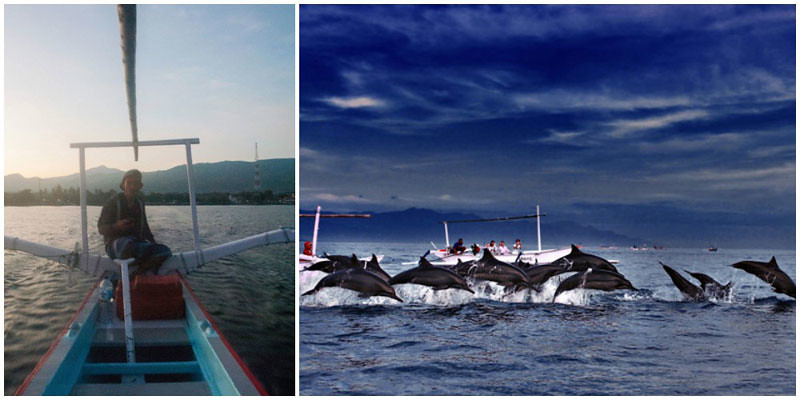2biii-dolphin-watching-via-TripCanvas,-Angga-Photography