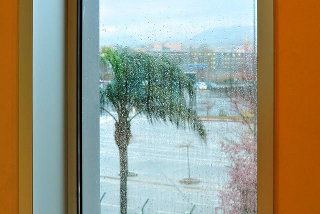 Nach einer sonnigen und milden Frühlingswoche an der Côte d'Azur machte uns das Nizza-Wetter den Abschied leicht: In der Nacht vor dem Rückflug schüttete und stürmte es so, dass wir uns um den Flug bangten. Und tatsächlich erfolgte der Abflug in Nizza am Samstagmorgen mit rund einer Stunde Verspätung. Nach einigen Turbulenzen war es dann eine recht kalte Ankunft am Flughafen Basel-Mulhouse-Freiburg. Nach einer Nacht im Schwarzwald zeigte der morgendliche Blick aus dem Fenster: SCHNEE !!! Die Rückfahrt nach Mannheim am 6. März war entsprechend weiß und ungemütlich. - Aber inzwischen ist ja auch hier der Frühling eingekehrt. Foto Brigitte Stolle März 2016