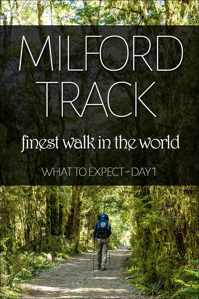 Milford Track Walk