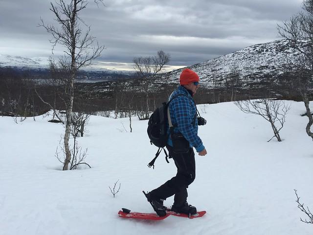 Sele haciendo trekking con raquetas de nieve en Laponia Noruega