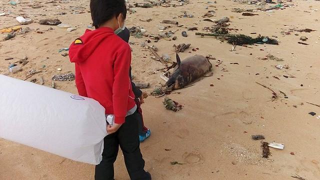 一起到海邊撿漂流物的小孩見到這景象,靜默了,海豚一直是他們最喜歡的動物。蔡曜任提供