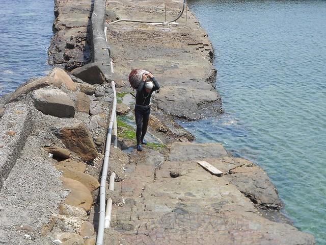 《親親海洋》海男高齡七十多,仍下海工作採回石花菜。圖片來源:吳惠君。