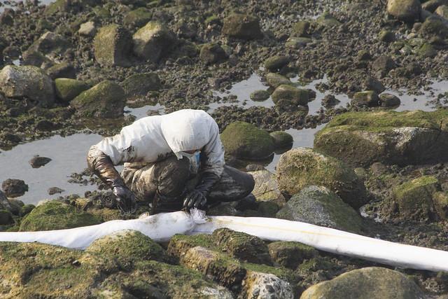 除污人員在岩岸縫隙中放置吸油棉索。攝影:周昭蕊。