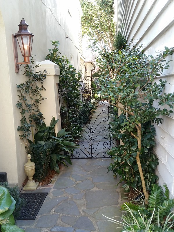 entryway grill with plants