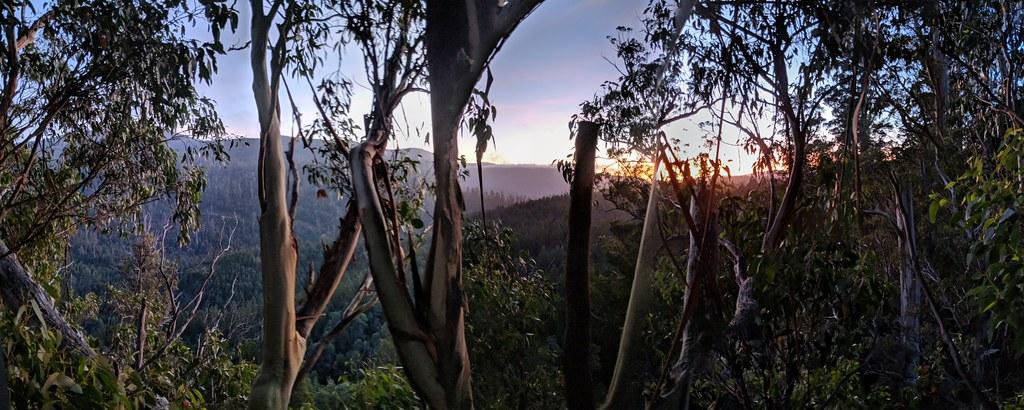 離地40公尺高所見的日出