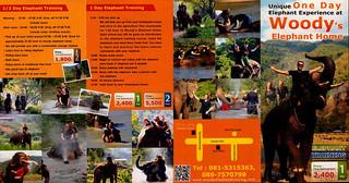 Woody Elephant Home Chiang Mai Thailand Brochure 1