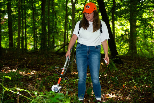 Auburn student Victoria Ashby carries a backpack aspirator, similar to a gentle portable vacuum, to collect mosquitoes