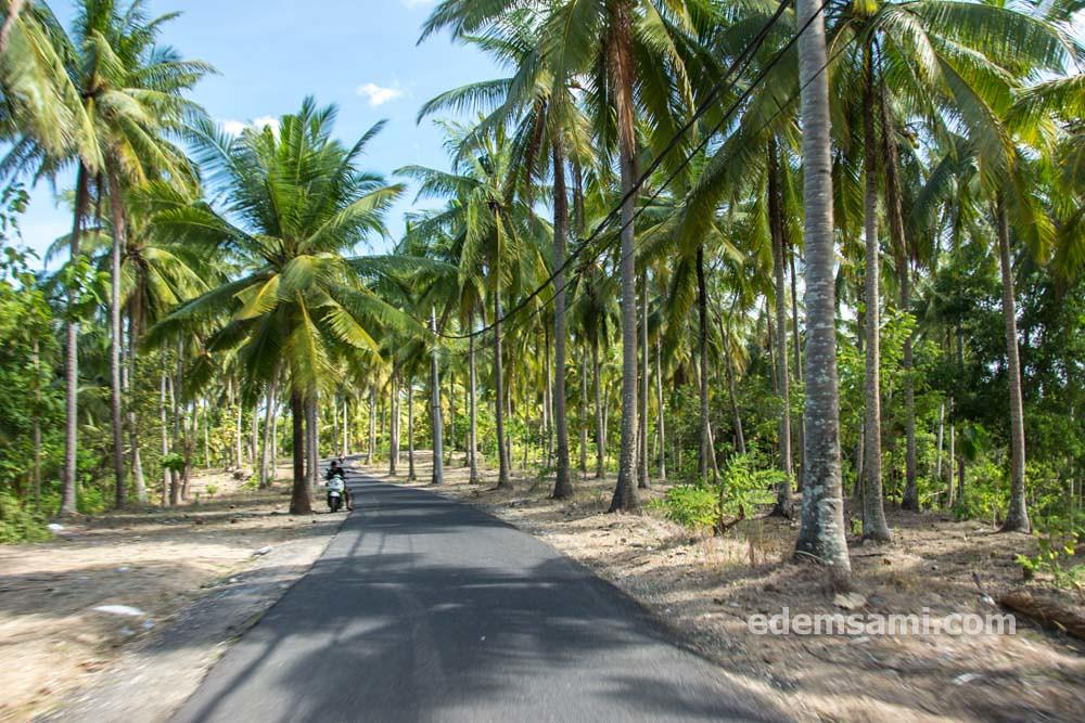 Нуса-Пенида Индонезия Бали