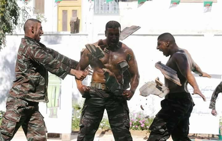 موسوعة الصور الرائعة للقوات الخاصة الجزائرية - صفحة 64 27786295147_5eed08a9d6_o