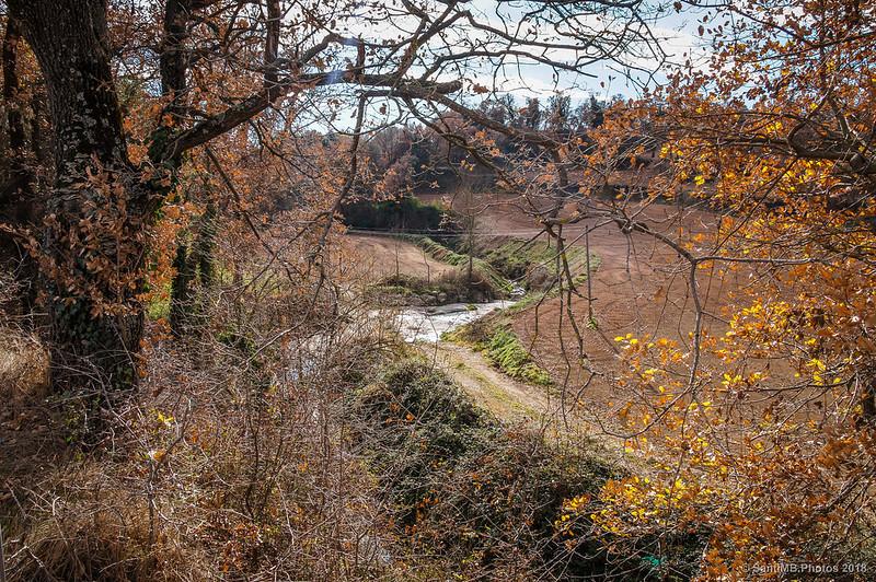 Riera de Coforb cerca de Cal Tana en Avià