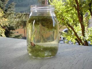 1 vaso acqua di fiume