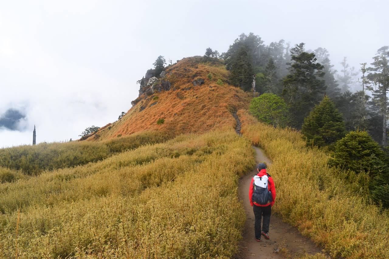 台湾・雪山登山 草原の稜線