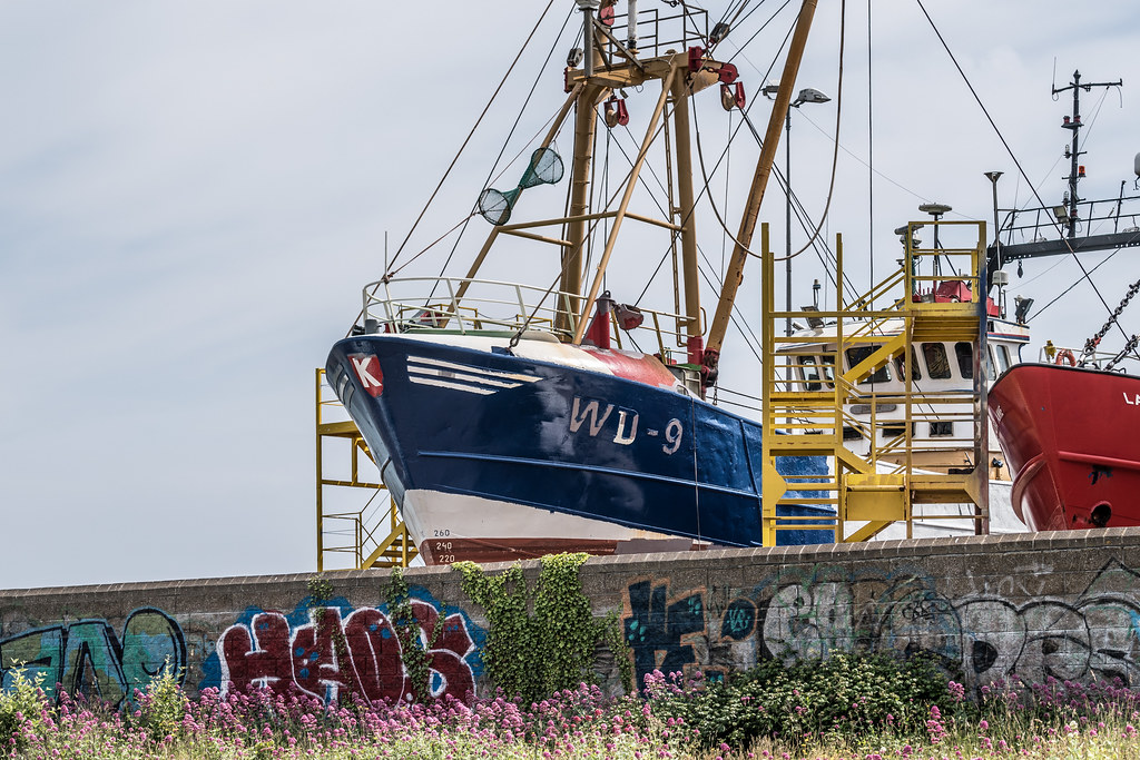 AN ACTIVE BOATYARD IN HOWTH 005