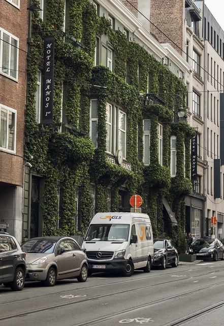 Bruksela, hotel porośnięty bluszczem 2