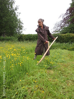 learn to scythe in Cumbria