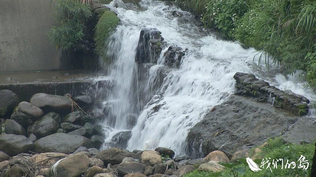 958-2-24暖暖水源地成為干擾較少的地區,保留了螢火蟲的棲地。