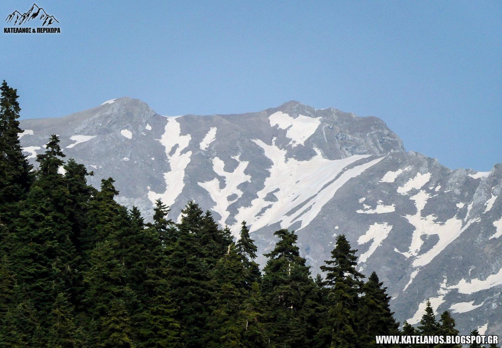 χιονουρες βουνο ελατα δασος ορεινα τρικαλων