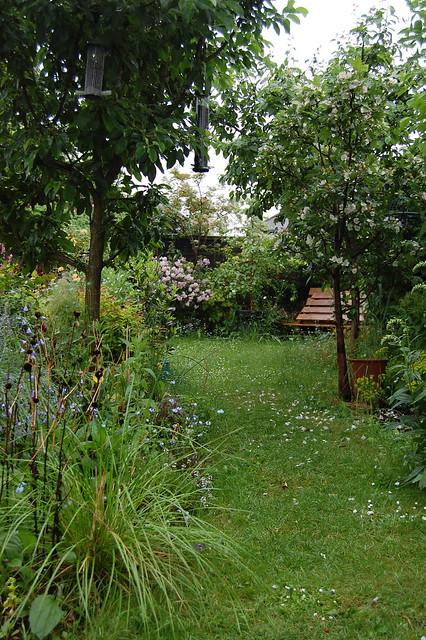 A view along a winding garden path