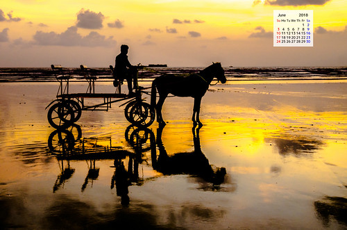 Free download June 2018 Calendar Wallpaper Murud Janjira Horse Buggy