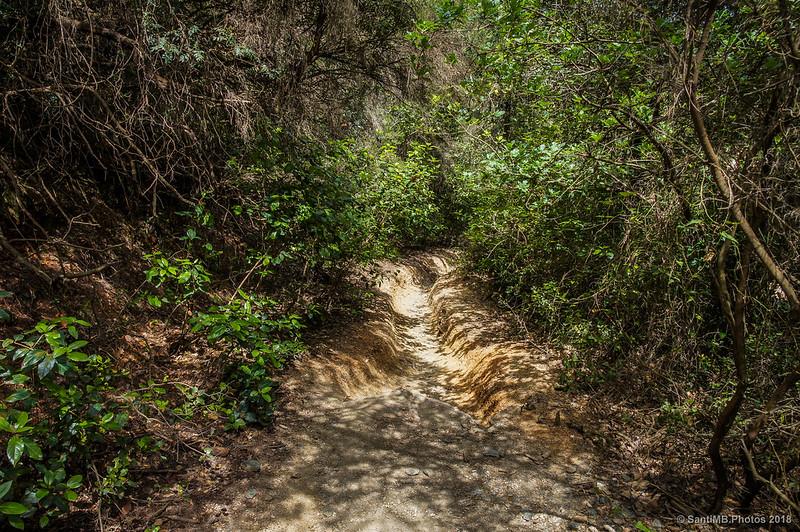 Camino erosionado por las bicicletas