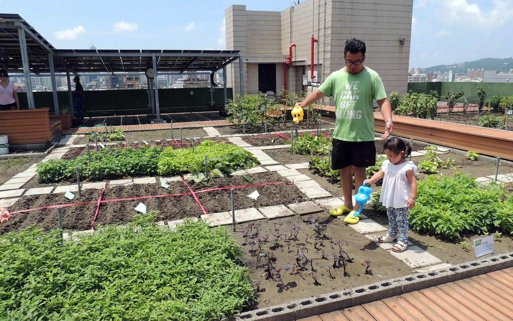 三民區公所綠屋頂。圖片來源:高雄市政府工務局