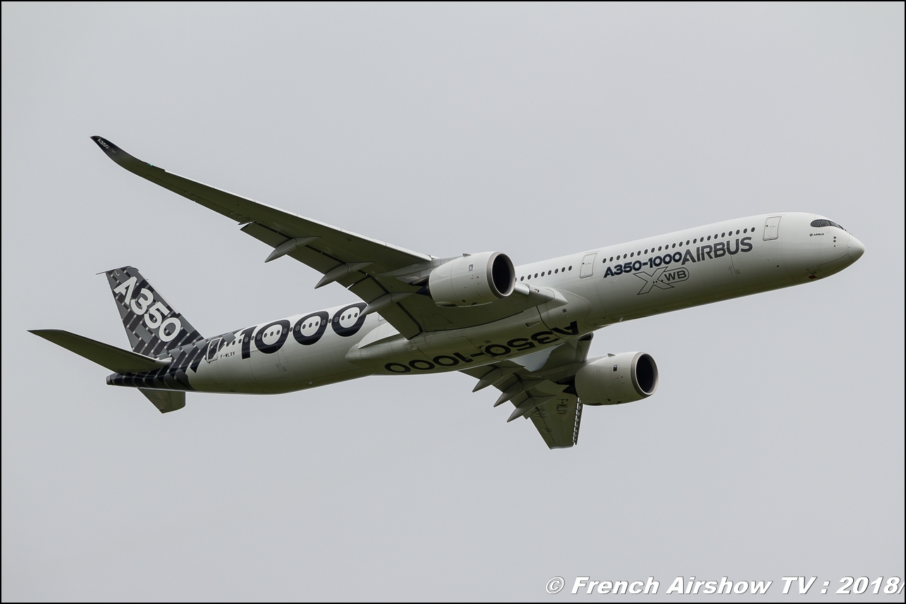 Airbus 350-1000 , Airbus Group , 32e édition d'Airexpo Muret-Lherm , Airexpo Muret 2018 , Canon EOS , Sigma France , contemporary lens , Meeting Aerien 2018