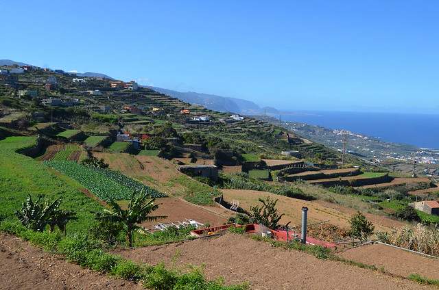 Walking San Juan de la Rambla, Tenerife