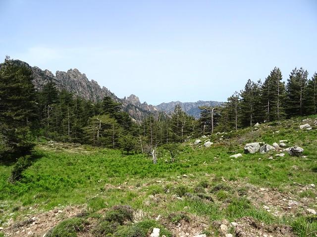 Bocca di Castedducciu : vue vers le Haut-Cavu