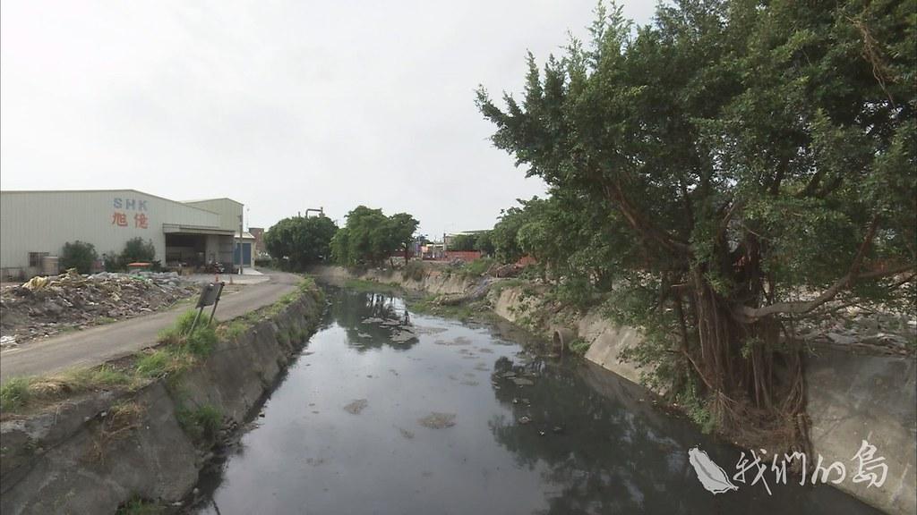 彰化縣計畫進行鹿港溪再現工程,但是工程一開始,就發生要砍除或移植大量溪岸樹木的情形。